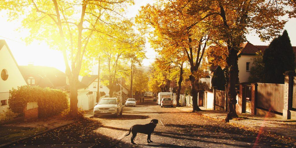 Fall 2017 Fairfax County Housing Update